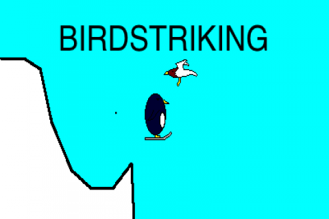 Birdstriking